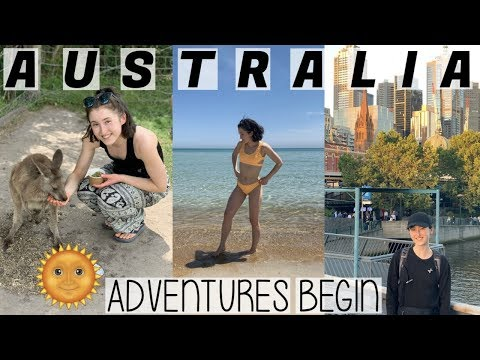 MY FIRST WEEK IN AUSTRALIA EXPLORING MELBOURNE & PHILLIP ISLAND | HOLLY GOES SOLO #003 TRAVEL VLOG
