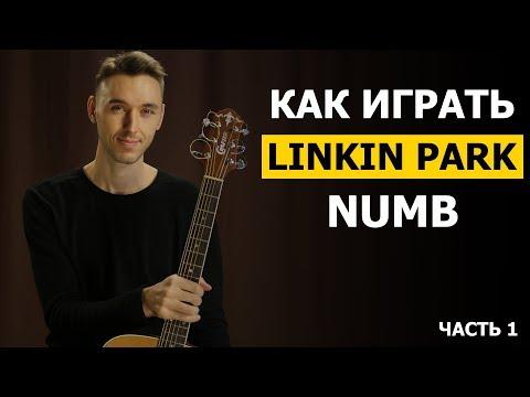 Видеоурок на гитаре linkin park numb