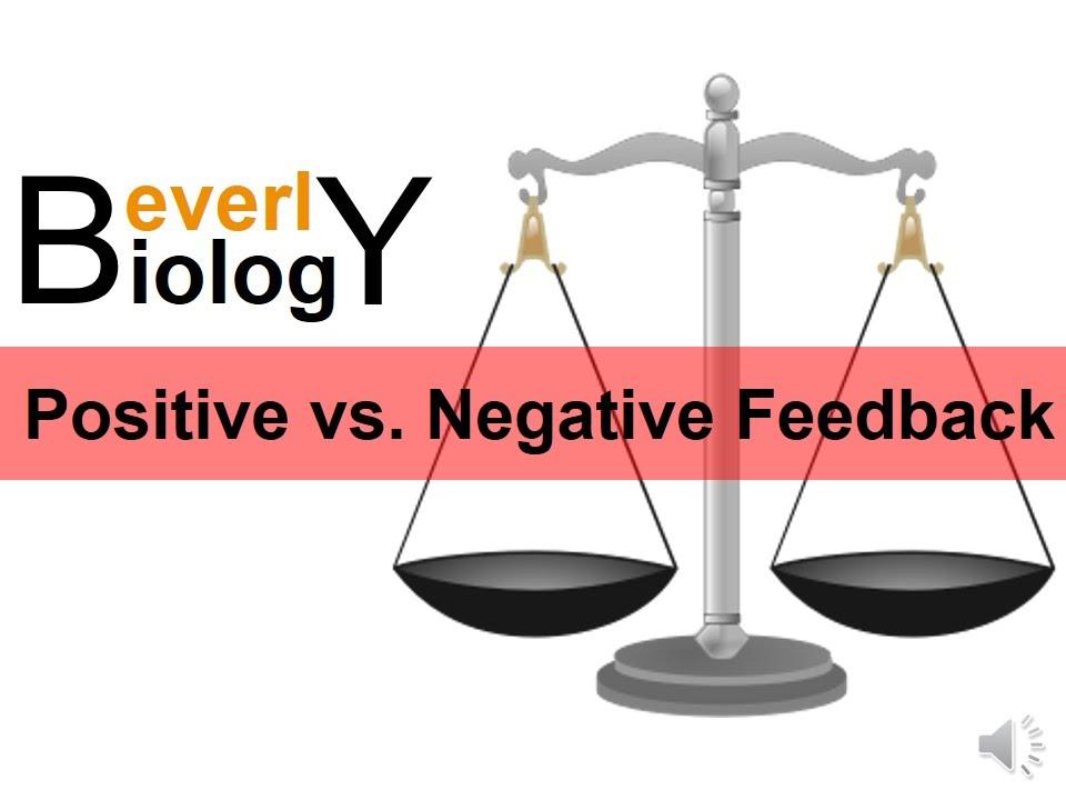 Negative vs Positive Feedback - YouTube