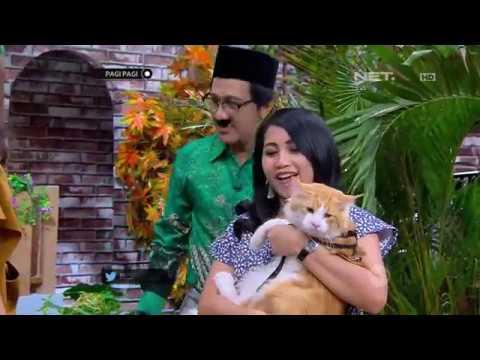 Pak Albert Bahas Fasilitas Mewah Untuk Kucing dan Anjing