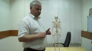 видео температура при межреберной невралгии