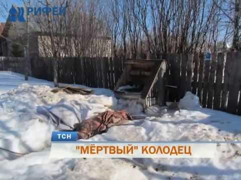 В Пермском районе в колодце с питьевой водой нашли расчлененный труп