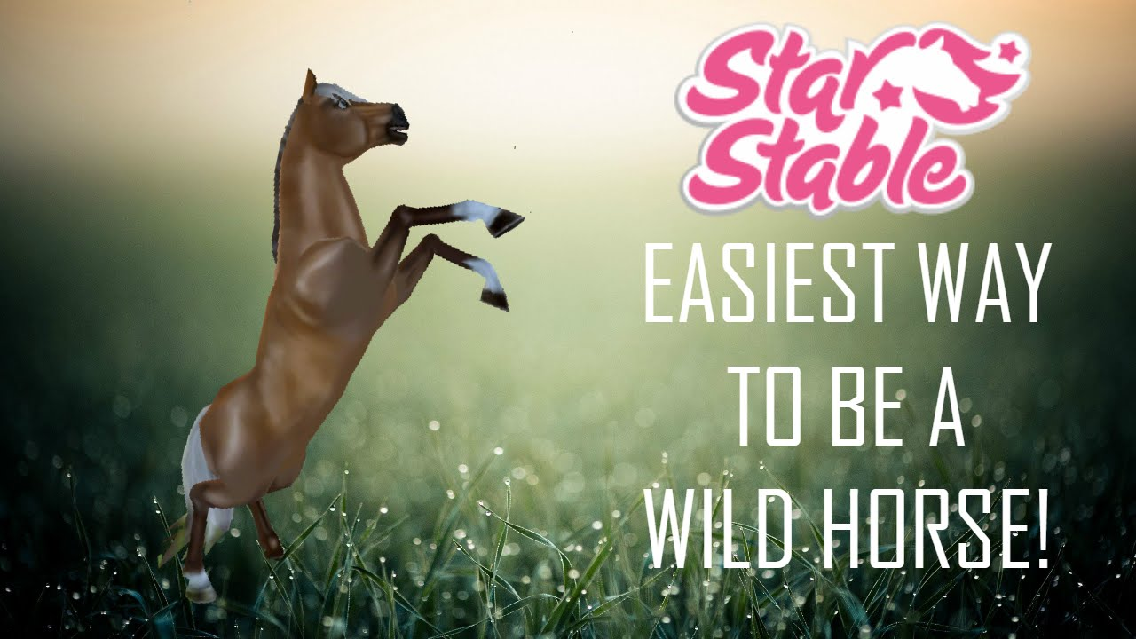 how to become a wild horse on star stable