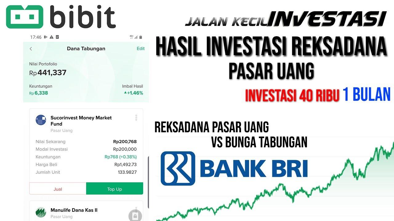Review Hasil Investasi 40 Ribu Di Bibit Reksadana Pasar Uang Selama 1 Bulan Investasi Untuk Pemula Youtube