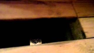 Внутренняя отделка бани(, 2015-07-04T09:28:10.000Z)