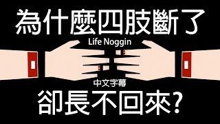 life noggin 為什麼四肢斷了卻長不回來 中文cc字幕