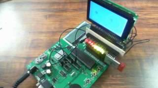 Microchip LCD 128x64