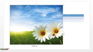 Презентация за 5 минут - Урок 2 - Работа с объектами слайда