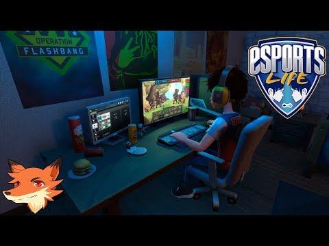 Esports Life [FR] Un simulateur de joueur professionnel par les devs de Youtuber's Life!
