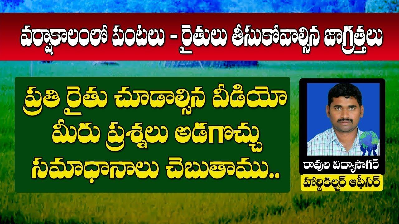 #Live | Agriculture Telugu | వర్షాకాలంలో పంటలు-తీసుకోవాల్సిన జాగ్రత్తలు| Ravula Vidyasagar | T10
