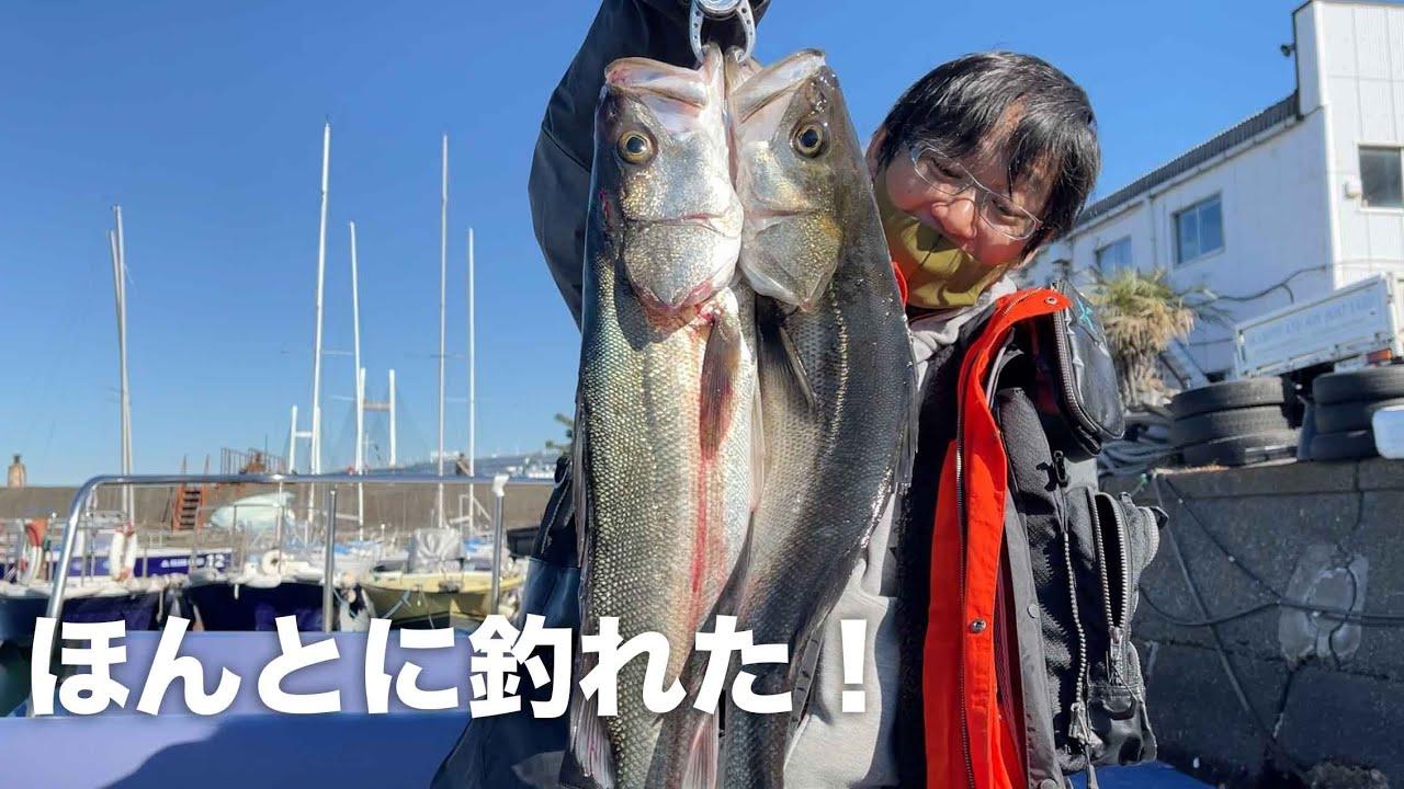 東京湾ボートシーバスが釣れすぎる
