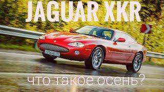 Jaguar XKR -- автомобиль дождя