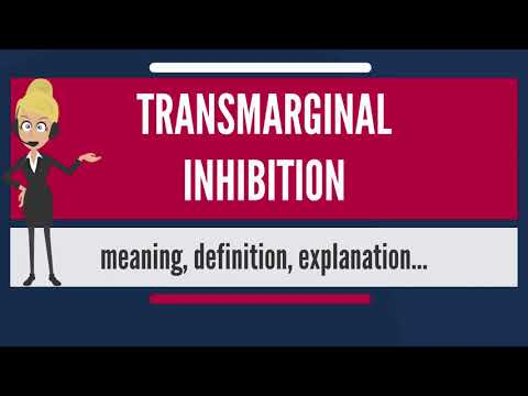 What is TRANSMARGINAL INHIBITION? What does TRANSMARGINAL INHIBITION mean?