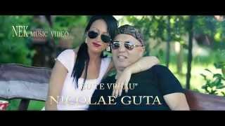 NICOLAE GUTA EU TE VREAU DE DRAGOSTE HIT 2013 VOL 30