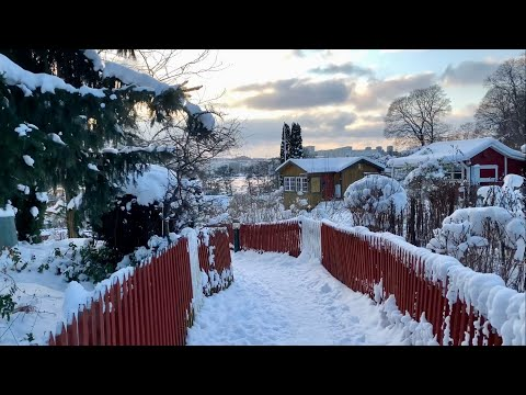Stockholm Walks: winter wonder in the communal gardens, city beach and streets. Ambient sound.