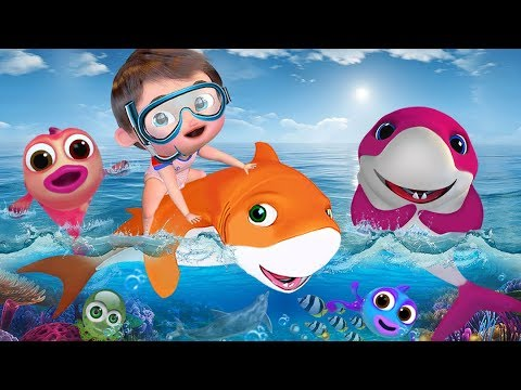Baby Shark , The Wheels on the Bus , Johny Johny Yes Papa ,Twinkle Twinkle Little Star , ABC Songs