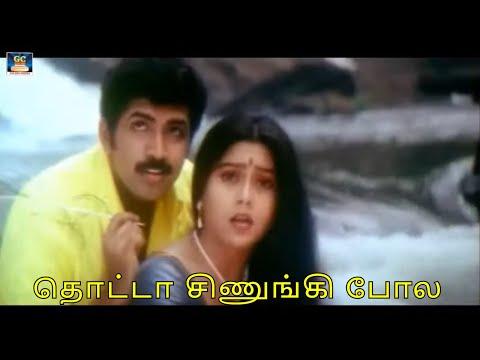 தொட்டா சிணுங்கி போல  Thotta Siunugi Pola  Deva  Kannal Pesava  Video Song  Hd