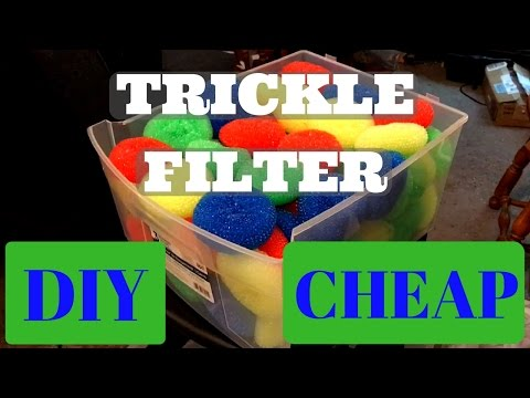 How To: Build a Wet/Dry Sump Trickle Filter