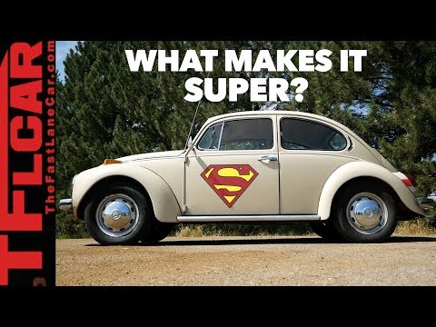 What the Heck is a SUPER Beetle? Beetle Diaries Ep. 6