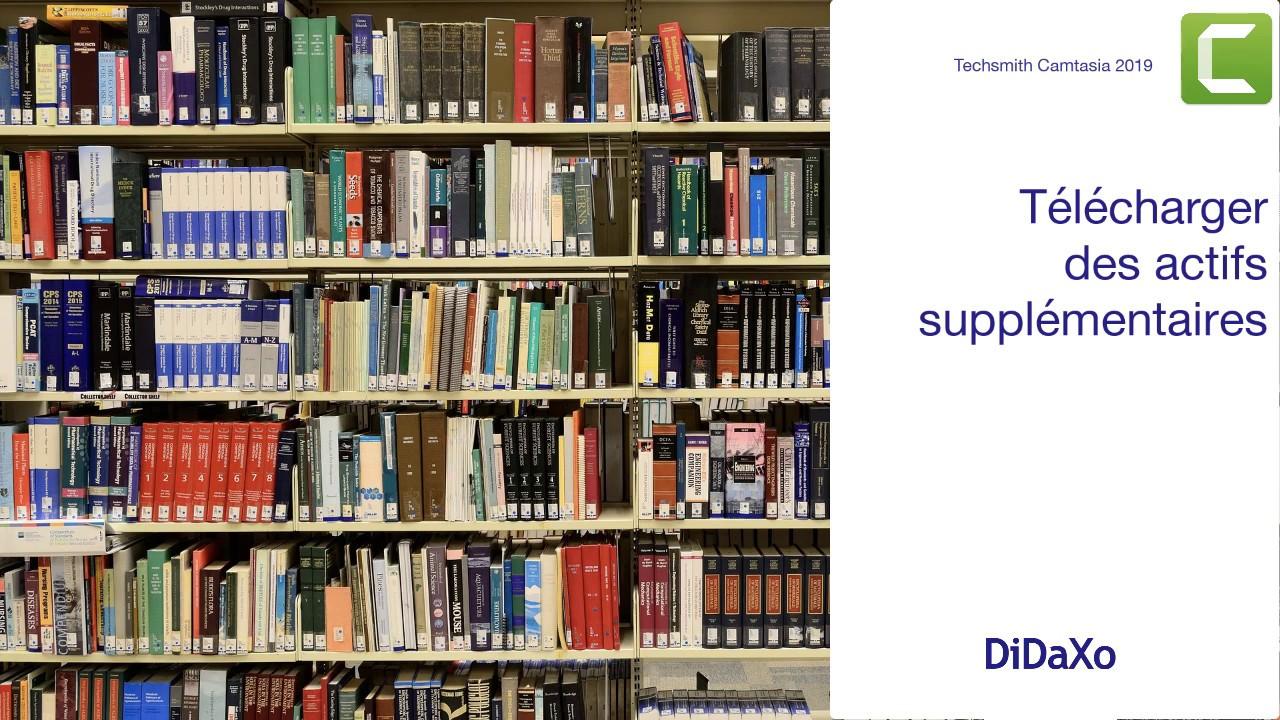 Capture d'écran erreur Bibliotheque.dll