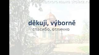Чешский язык. Фразы