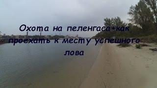 Ловля Пеленгаса на Дону,  в Ростове-на-Дону + дорога к рыбному месту.