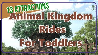 Animal Kingdom Ride for Toddlers
