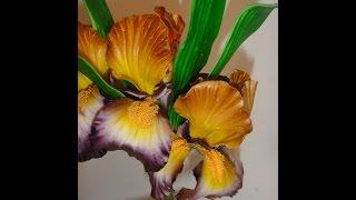 цветы из сахарной мастики.  ирис  (2 часть) .Gumpaste flowers. Making a Gumpaste Iris (II)