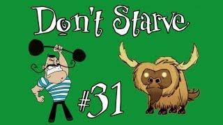 Don't Starve #31 В поисках еды...