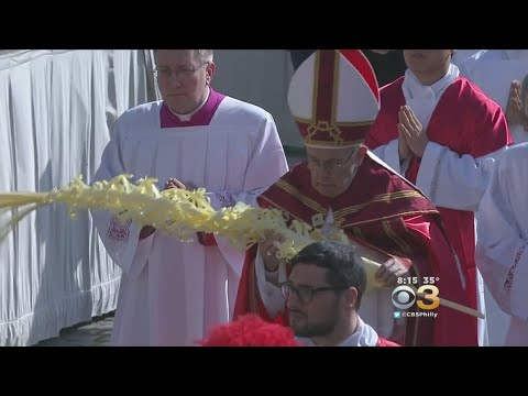 Palm Sunday Celebrations Take Place At St. Peter's Square