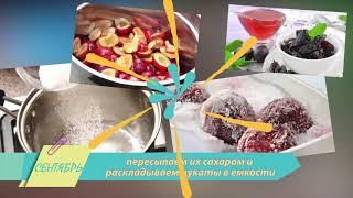 Заготовка фруктов и овощей на зиму. Как сохранить полезные свойства плодов?