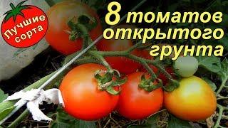 видео Томаты: лучшие сорта для теплиц: выращивание, урожайность, семена, посадка ранних сортов
