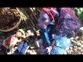 Island Adventures-Monster High(Funny)