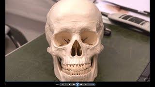 Chirurgie maxillo-faciale (Votre Santé) - HCL