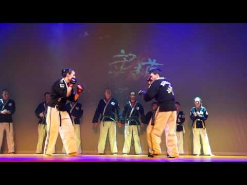 Festival des Arts Martiaux et des Sports de Combats - Avon 2016