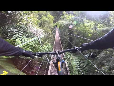 Mountain Biking Croesus Track, West Coast, New Zealand