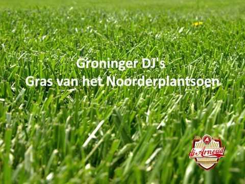 Groninger DJ's - Gras van het Noorderplantsoen