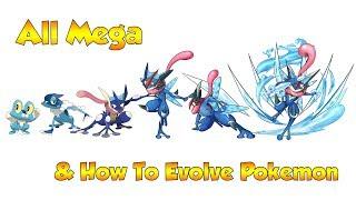 How To Evolve Pokémon - Geneŗation 6 Kalos & Mega Evolutions (Animated Sprites)