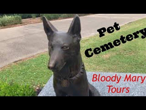 Pet Cemetery: Spirit Pets