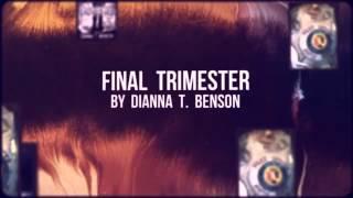 Final Trimester -- Short Book Trailer