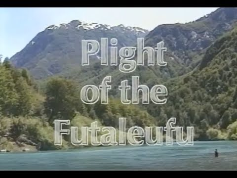 Plight of the Futaleufu