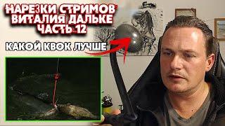 Ответы на вопросы о ловле сома Часть 12 нарезки стримов Виталия Дальке