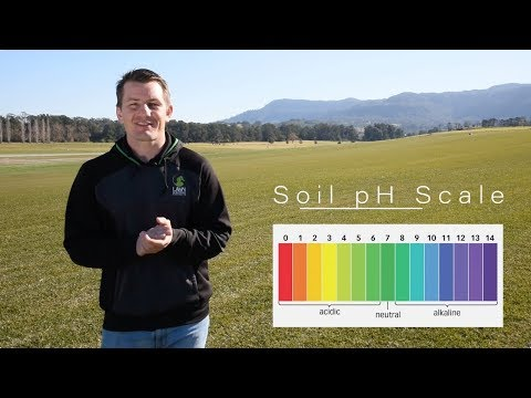 How To Test Your Soils PH