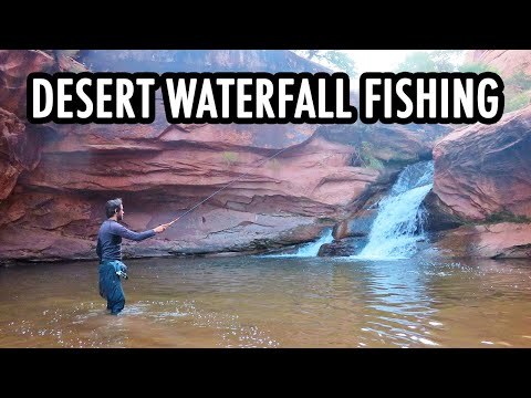 Fishing Desert Waterfalls For Wild Trout! (Tenkara Fly Fishing)