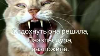 личный дневник кота )))