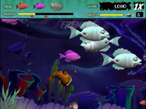 Feeding Frenzy Stage 22: Surgeon Crossing streaming vf