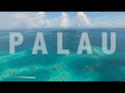 Diving Palau with the Aggressor Fleet