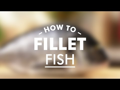 How To Fillet Fish Properly – Way 2 || Gastrolab Basic Cooking Skills