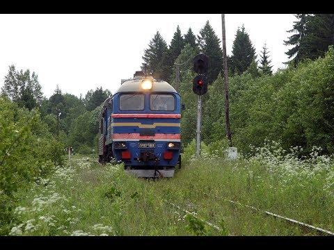 ДМ62 1804 отправляется на перегон Овинище-2 - Весьегонск Октябрьской железной дороги.