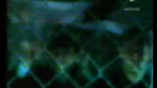 Tatu - All The Things She Said (Dave Aude